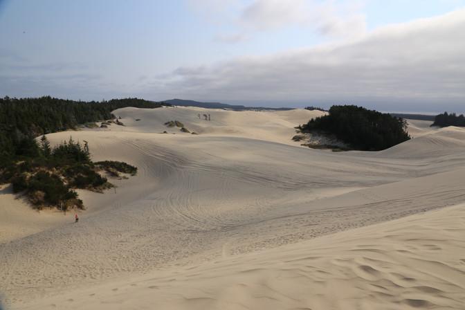 Sand Dunes, Oregon, USA