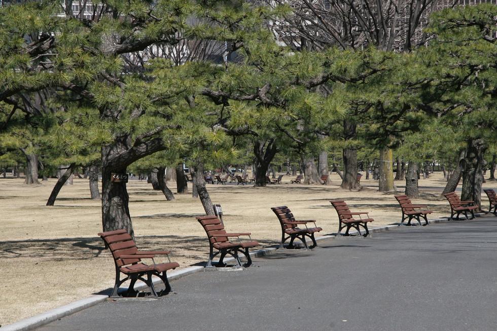 Ipmerial Palace Gardens, Tokyo, Japan