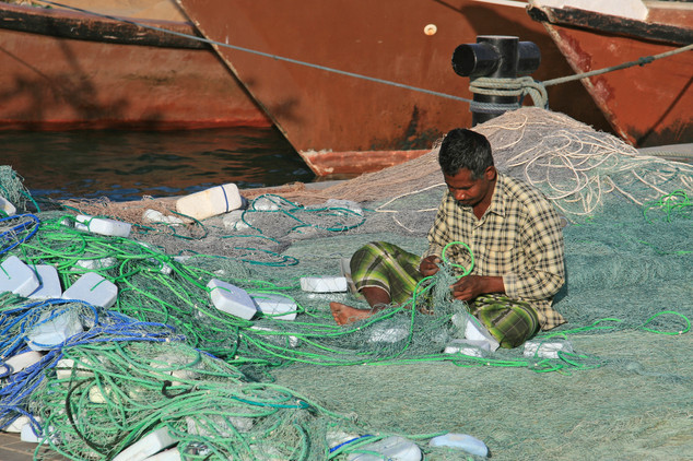 Fisherman, Qatar
