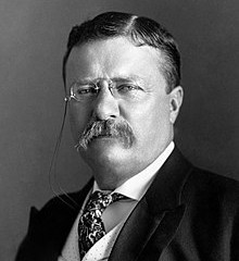 Activities and Fireworks for Theodore Roosevelt