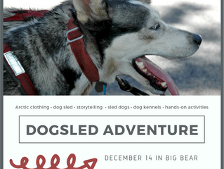 Dogsled Adventure