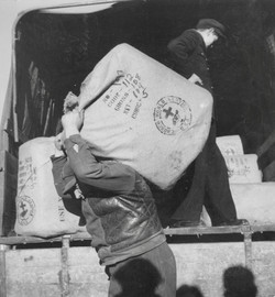 San Sabba, unloading the clothing bales from WCC America, 1950-51