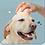 Thumbnail: Bàn chải gội đầu quả cà