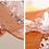Thumbnail: Lồng bàn họa tiết Nhật Bản - LB001 & LB002