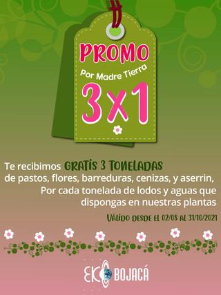 PROMO 3x1 por MADRE TIERRA