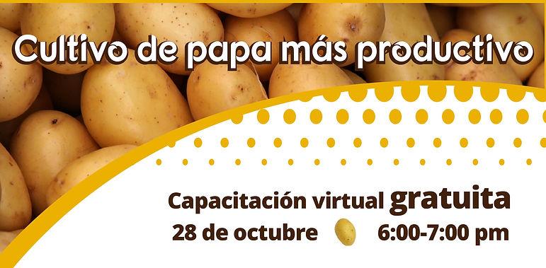 capacitacion-cultivo-papa-mas-productivo.jpg