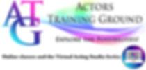 ATG VAS Flat Logo.jpg