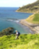 coromandel-coasts-hikes