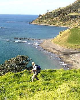 coromandel-coasts-hikes