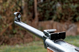 Arme Sight and Barrel
