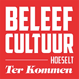 cultuur hoeselt.png