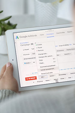 Running successful online advertising campaigns using Google AdWords.