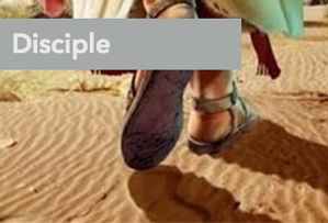 disciple_edited.png