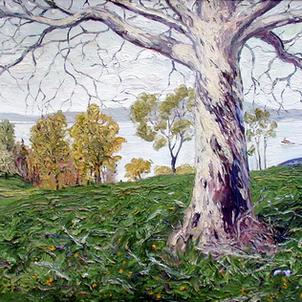 White Tree Along the Hudson