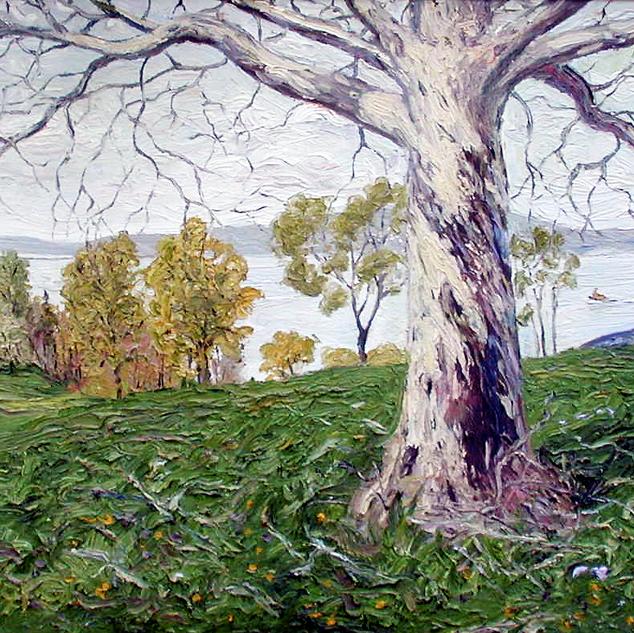 Tree along the Hudson