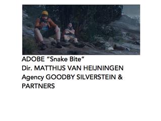 Adobe 'Snake Bite'