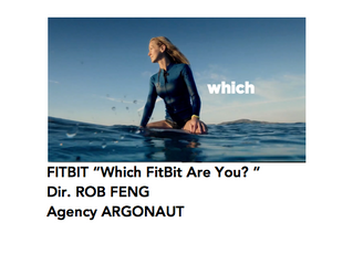 Fitbit 'Which Fit Bit Are You'