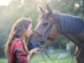 Bodenarbeit mit Raidho Healing Horses bei Coaching mit Herz und Pferd