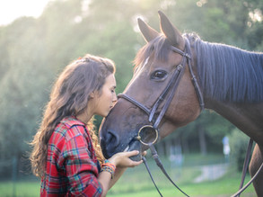 Master-Studiengang Interaktion Mensch-Pferd