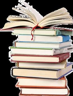 books-sunil-kumar-gulati-ias.png