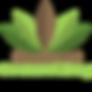 Chestnut_transparent_medium_800x800.png