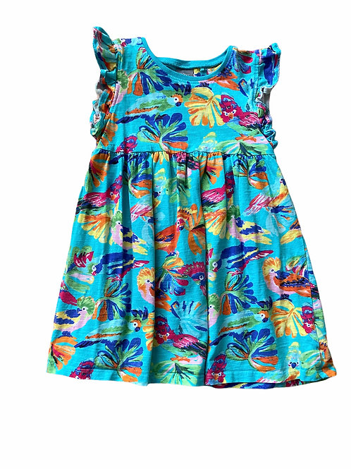 Next 3-4 years Parrot Dress