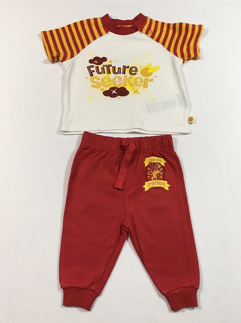 Character.com 3-6 months Harry Potter Gryffindor T-shirt and Joggers