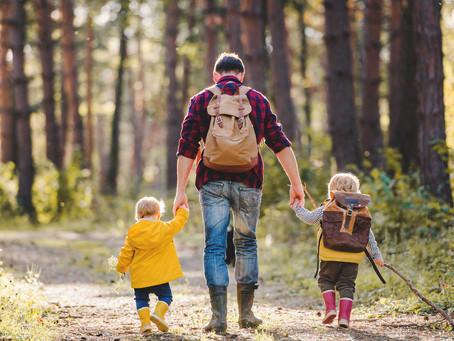 Dass es einfach gut tut, im Wald zu sein, das würde fast jeder von uns bestätigen können.