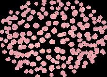 75 pink.png