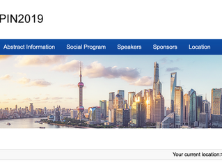 Radacsi group attending the Electrospin2019 conference in Shanghai
