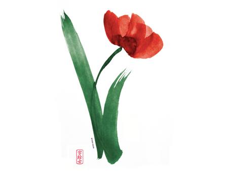 Microsangrados en Medicina China: indicaciones clásicas y modernas.