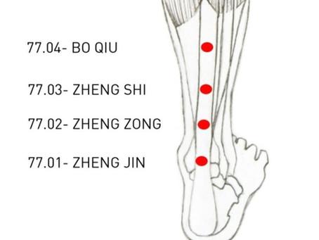 Puntos Tung para el dolor de cuello y las vértebras cervicales