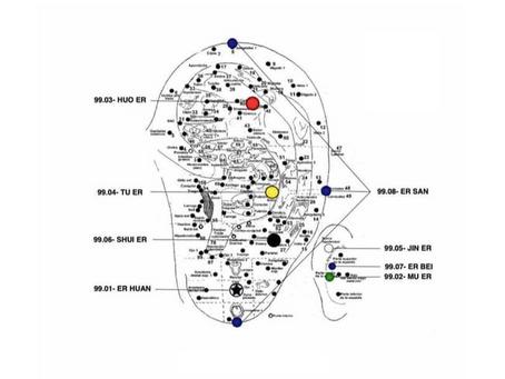 Microsistema en la oreja para el diagnóstico y tratamiento de los 5 zang (órganos) del Maestro Tung
