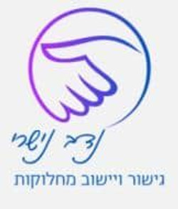 לוגו של נדב נישרי