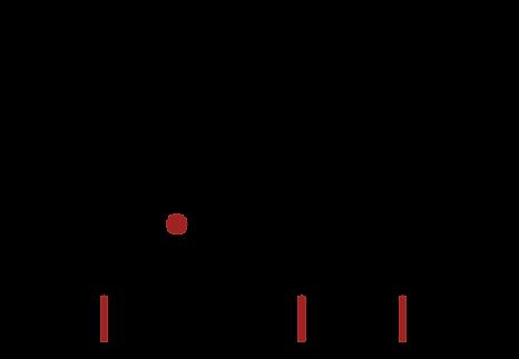 House of ShAkE logo