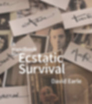 DE_A_Handbook_for_Ecstatic_Survival_FRON