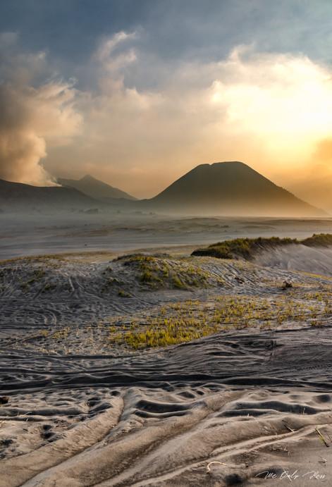 Sand Paths.jpg