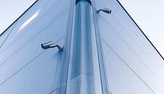 secure yard.jpg