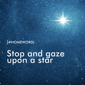 Stop And Gaze Upon A Star