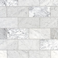 Carrara-Marble-Subway-Tile-Marble.jpg