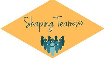 Shaping_Teams%C2%A9_edited.jpg
