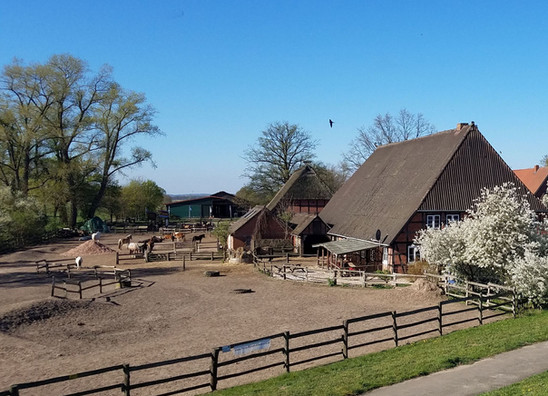 Pony Ranch Elbstrand.jpg