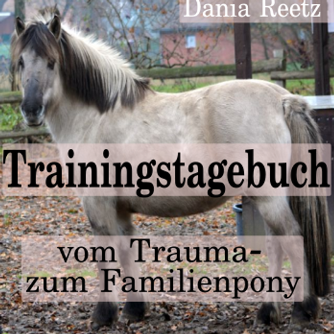 Trainingstagebuch e-book