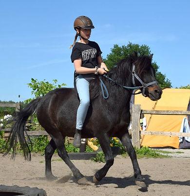 Pony-Foto%2520Ersatz_edited_edited.jpg