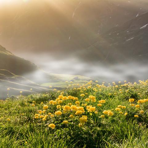 Foggy Mountains Austria