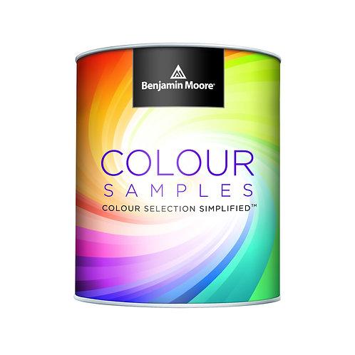 Benjamin Moore Colour Sample