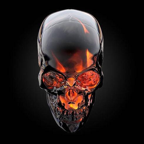 The Skull Computer Co. Logo