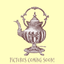 pictures coming soon The Tea Party Compa