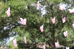 Backdrop Butterflies Pink Foamy
