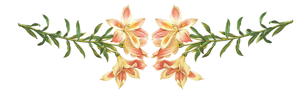 Flowers Footer What I Can Do Page The Tea Party Company